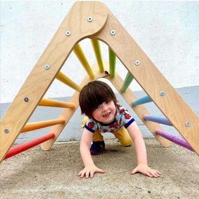 Pikler Triangles background image